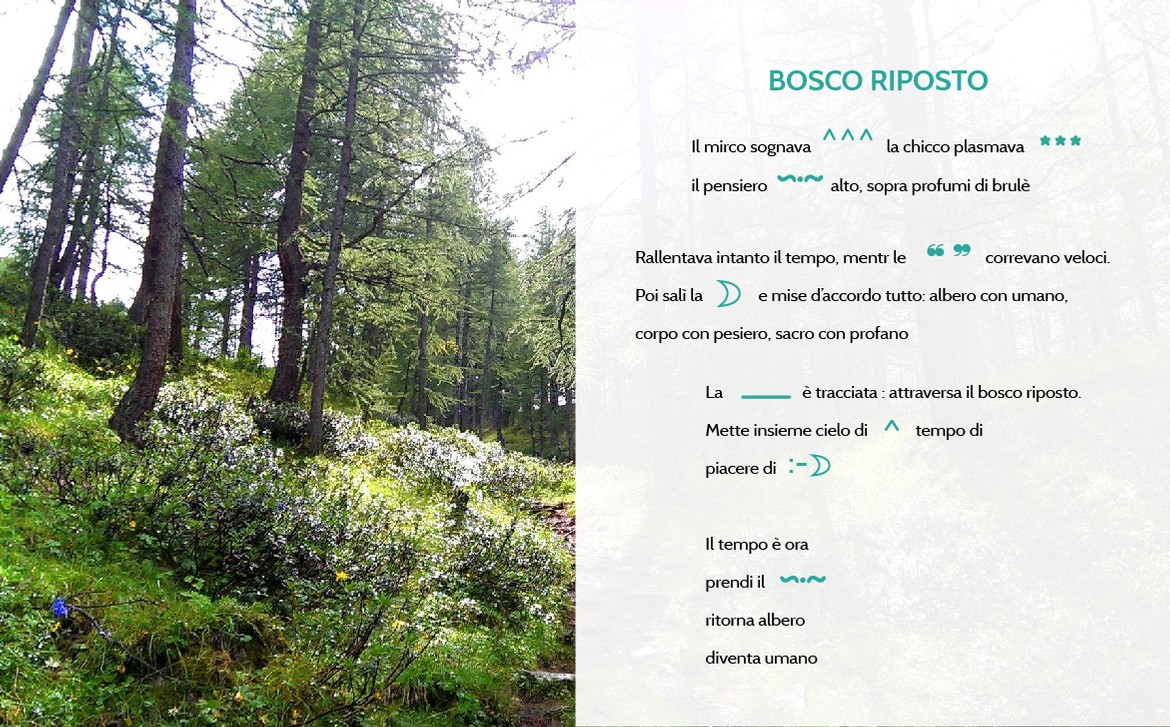 cartolina bosco